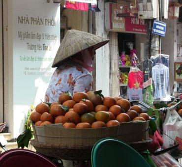 A Peregrine Dame Deleted Scene: Ha Noi Street Food